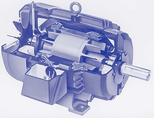 10.1 A.C. Induction Motors